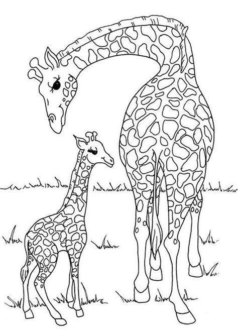 imagenes de jirafas animadas para dibujar dibujo para colorear jirafa madre e hija