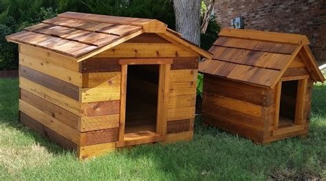 cedar dog house cedar dog house hambone and dogs pet treats