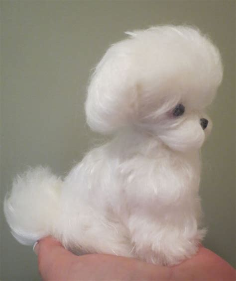maltese puppy cut maltese puppy cut by designs by at the shoppe