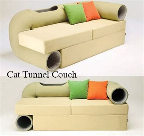 cat tunnel sofa for sale 1000 images about inspiration cat room on pinterest