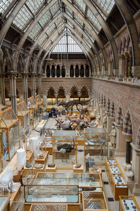 amsterdam museum of natural history oxford university museum of natural history e architect
