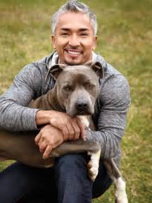 whisperer with cesar millan picture of whisperer with cesar millan breeds picture