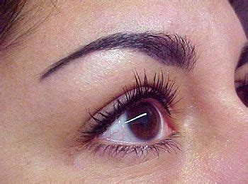 tattoo eyeliner wet line perfect eyeliner tattoo in between lashes super thin