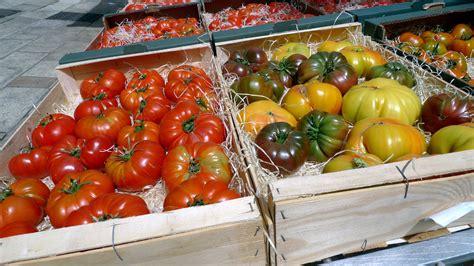 cuisiner des tomates recettes de tomates id 233 es de recettes 224 base de tomates