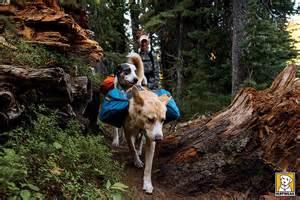 backpacking packs ruffwear approach pack hunderucksack blau hundeshop de