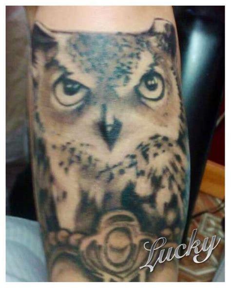 owl tattoo portrait lucky owl portrait owl animals