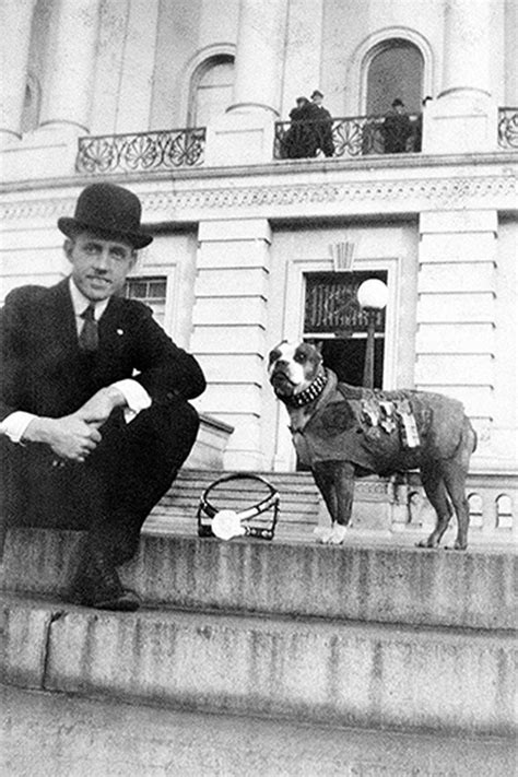 Ww1 Sergeant Stubby Sergeant Stubby Will Change The Way You Look At Your