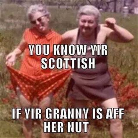 Scottish Meme - 99 best glesca banter images on pinterest scotch