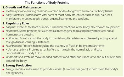 5 proteins in our of protein in our the average weight for a 5 5