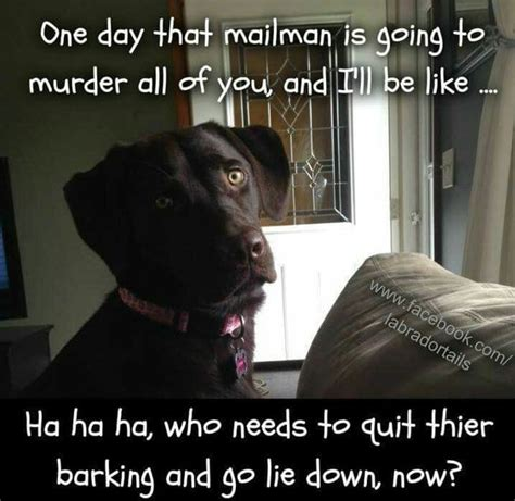 barking  cute   true  pinterest