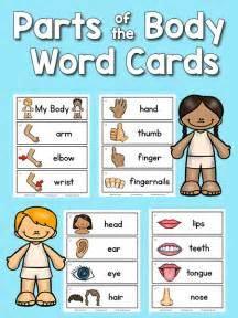 parts picture word cards prekinders