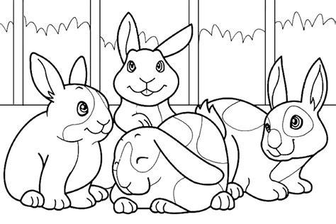 imagen para colrear del ciclo de vida conejo galer 237 a de im 225 genes dibujos de conejos para colorear