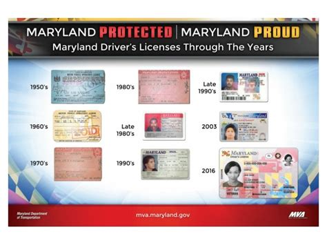 big maryland drivers license   fraud protection