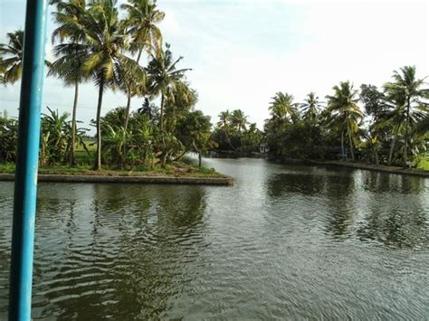 alleppey boat house timings house boat in the waters of kuttanad picture of alleppey backwaters alappuzha