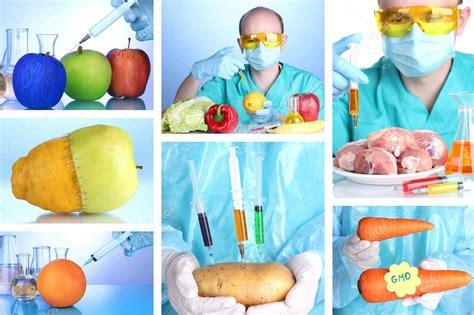 biotecnologia alimentare seguridad alimentaria bromatolog 205 a y microbiolog 205 a de los