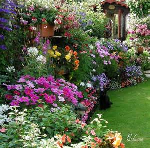 Perennial Garden Flowers Top 15 Pictures Flower Garden Photography Project Ideas Holicoffee