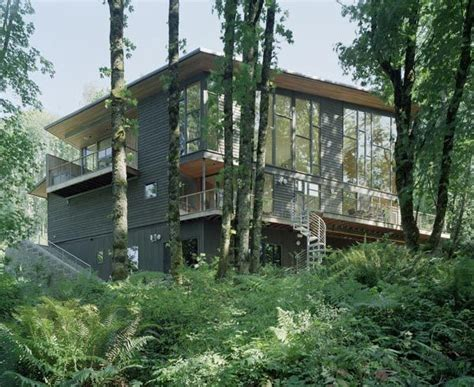organic house beautiful house surrounded by forest and lush landscape