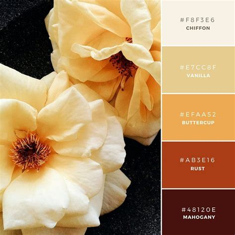 canva gold color code build your brand 20 unique and memorable color palettes