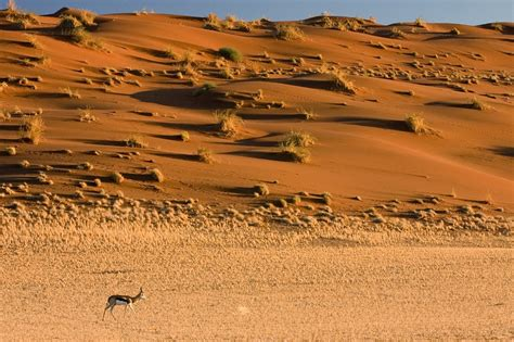 namibia travel guide and travel info tourist destinations