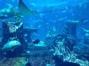 Bahamas Lost In The Light The Lost City Of Atlantis Random Onehallyu