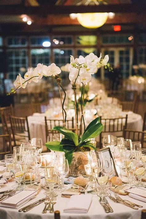 new york themed wedding decorations 1000 ideas about plant centerpieces on potted