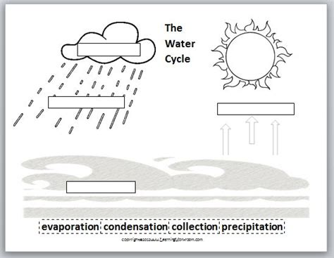 Water Worksheets by The Water Cycle Worksheets 2nd Grade