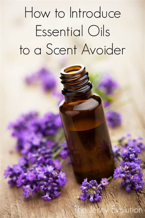 how to use essential oils to scent a room how to start essential oils with a scent avoider