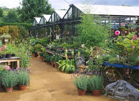 Garden Center Nursery Garden Centers Distinct Vision