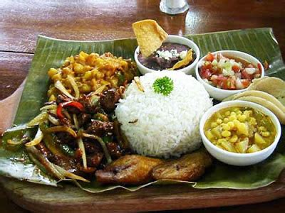 costa rica cookbook learn to cook costa food for newbies books costa rica invest costa traditional cuisine