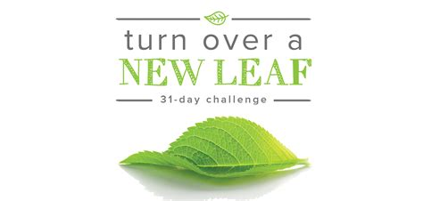 new year new leaf new year new leaf 28 images new year new leaf aol mail