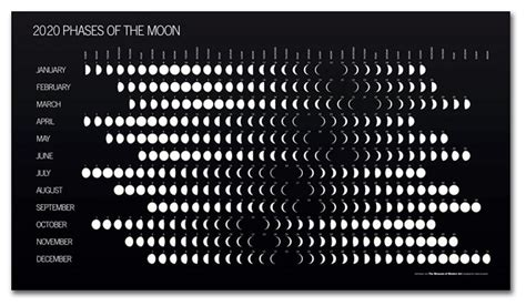 phases   moon  calendar contemporary art museum st louis