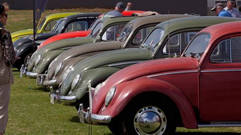 volkswagen easter waikato town braces for volkswagen beetlemania at easter