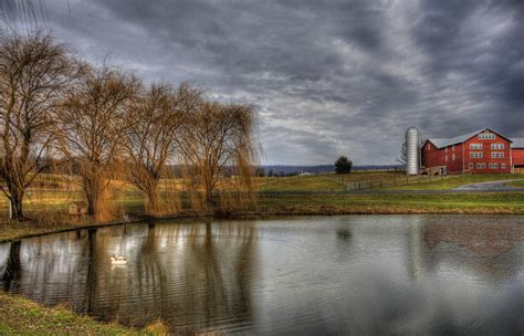 country buffets the country digital by batdorf