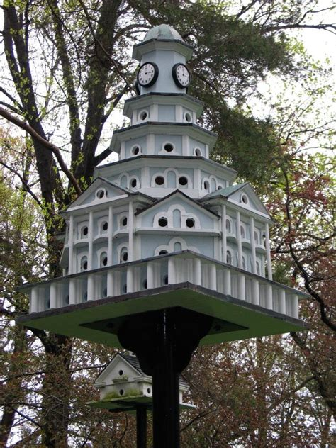 Purple Martin Bird House Images