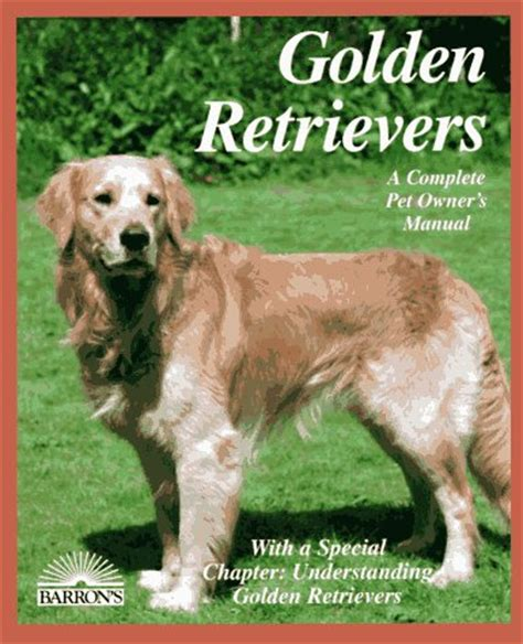 feeding golden retriever golden retriever feeding information dogs in our