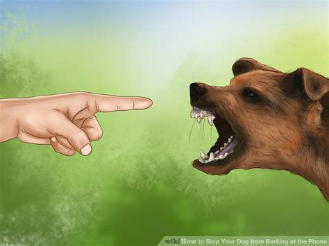 stop barking at 3 ways to stop your from barking at the phone wikihow