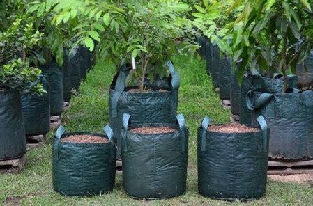 Jual Planter Bag Jogja promo o8ii 263i 3o4 penjual planter bag di jogja planter