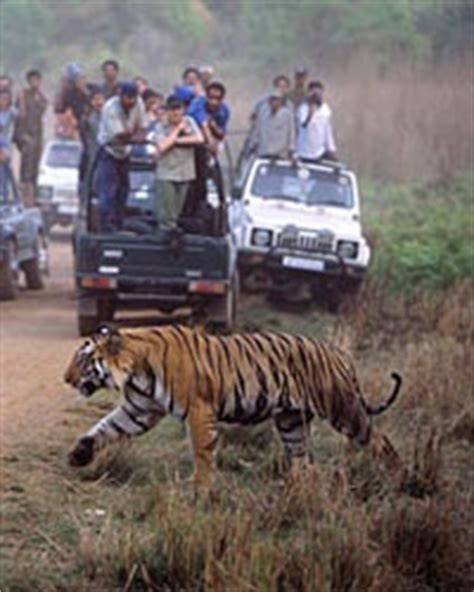 India's Best Wildlife Safaris   Travel   Leisure