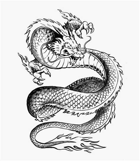 tattoos book 2510 free printable tattoo stencils dragon