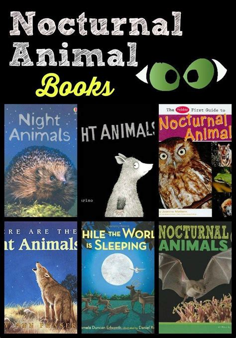 printable nocturnal animal book 64 best images about nocturnal animal fun on pinterest
