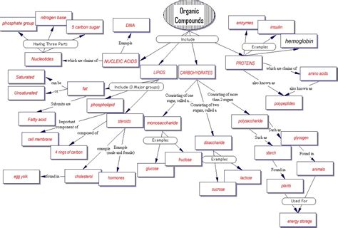 Organic Compounds Worksheet by Organic Compounds Concept Map Answers