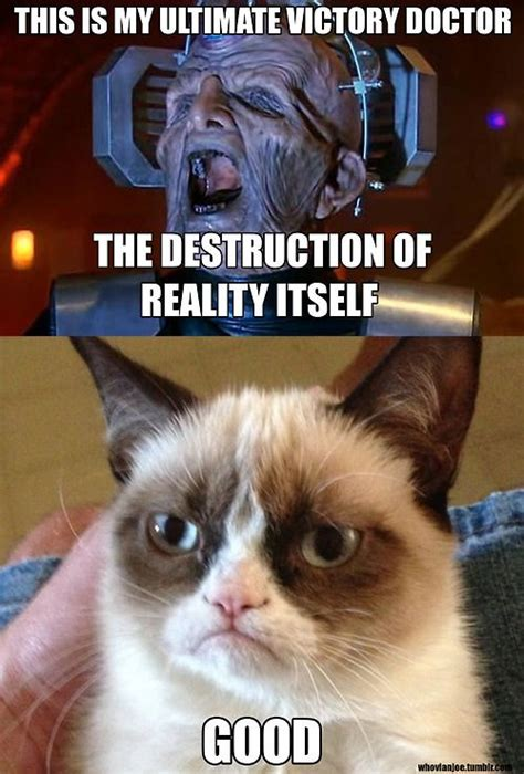 Doctor Who Cat Meme - doctor who and grumpy cat bowties are cool pinterest