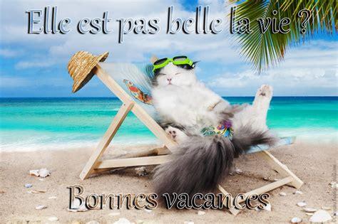 la belle na pas 9782021363326 cartes virtuelles vacances la belle vie joliecarte