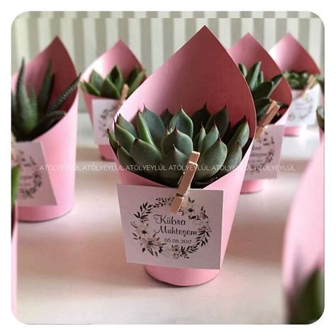 Baby Shower Favoura by 22 Best Baby Shower Succulent Favour Bomboniere Images On