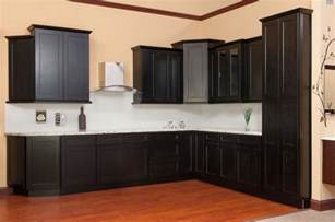 Shaker Java Kitchen Cabinets Sample Door Rta All Wood In