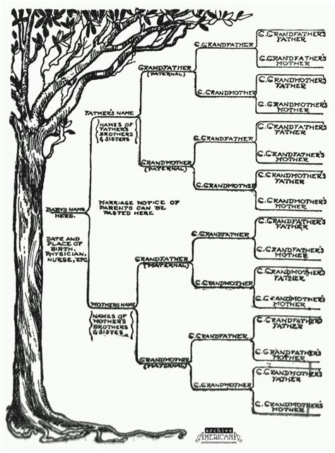 genealogy templates for family trees start a genealogical record for your family 1905 family