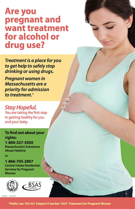 Pregnancy Detox by Massachusetts Health Promotion Clearinghouse Pregnancy