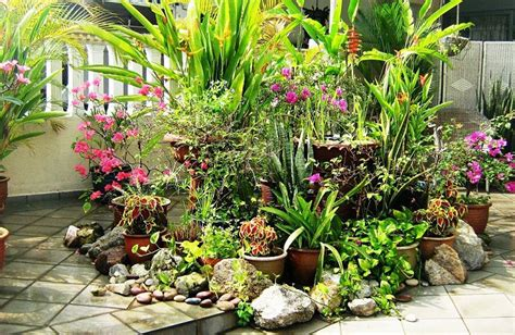 my flower garden 11 most essential container garden design tips designing