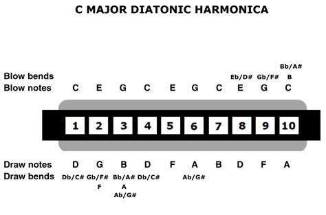Harmonika Diatonik 24 Lubang Harmonicalovers Bermain Dengan Harmonika Tremolo