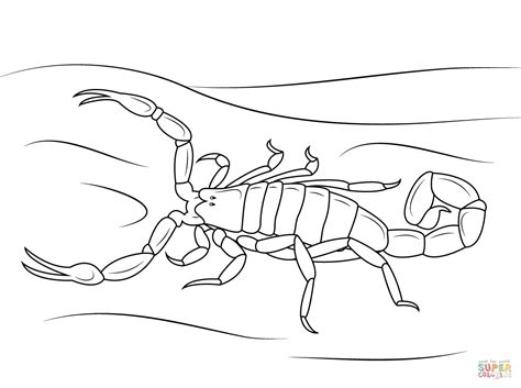 scorpion printable coloring pages